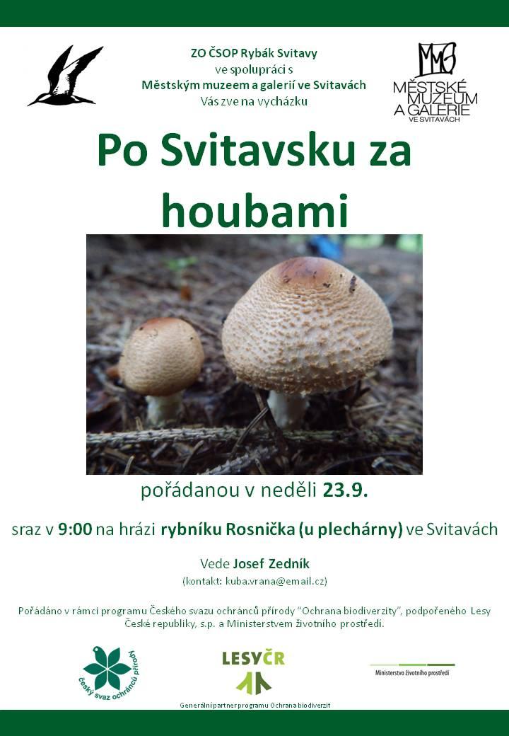 plakát Po Svitavsku za vážkami