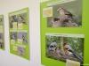 vernisáž výstavy Ptáci E
